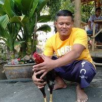 หายากหนึ่งในล้าน! ไก่ชนตาเพชร เชื่อนำโชคลาภ