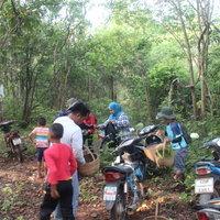 วิถีชาวบ้าน ฝนชุกเห็ดผึ้งขมโผล่ ชาวบ้านหาเก็บกินและขายสร้างรายได้