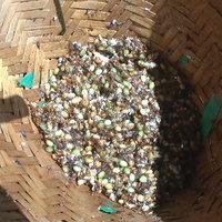 เมี่ยงแม่เป้ง เมนูเด็ด สร้างรายได้ในช่วงวิกฤตโควิด 19