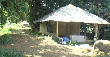 ปศุสัตว์กันพื้นที่หมูตาย หวั่นเชื้ออหิวาต์แอฟริการะบาด