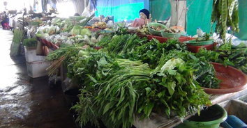 ราคาผักปรับขึ้นต้อนรับเทศกาลกินเจ แม่ค้าเผยพิษน้ำท่วมทำของแพง-ยอดขายตก