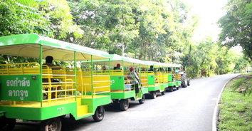 ชวนชิวนั่งรถไฟรอบอุทยานหินเขางู ชมวิวให้อาหารลิงกลางคืนชมหิ่งห้อย