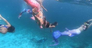 ทำดีต้องชื่อชม กลุ่มเงือกน้อยบุกเกาะสิมิลันดำน้ำเก็บขยะใต้ทะเลและชายหาด