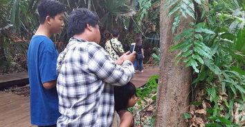คอหวยส่องหาตัวเลขโค้งสุดท้ายวันหวยออกที่ต้นมะเดื่อยักษ์