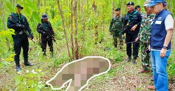 พบสองศพ คนงานชาวกัมพูชาหนีตายจากช้างป่าแต่ไม่รอด
