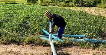 พาชมแหล่งปลูกแตงโมแปลงใหญ่กว่า 200 ไร่ ธุรกิจเงินล้านของชาวบ้านดอนยานาง