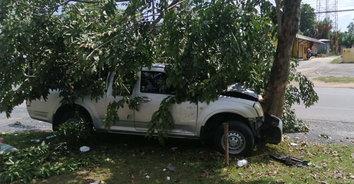 แม่ค้าขายผักวัย 60 ปี ขับกระบะหลับในเสียหลักพุ่งชนต้นไม้