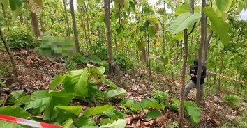 หนุ่มแม่แจ่มหายตัวไป พบแขวนคอตายกลางป่า