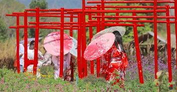 แวะเที่ยวเมืองญี่ปุ่น สวนคาโนนะ สวนลุงไกร ซื้อข้าวเกรียบเห็ดหอม