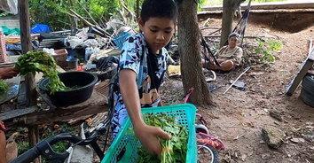 ชีวิตต้องสู้! เด็กวัย 13 ยอดกตัญญู เก็บของเก่าและผักขาย หาเงินดูแลครอบครัว