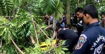 พายุพิโรธ! พัดต้นไม้ล้มทับแม่เฒ่าวัย 78 เสียชีวิตกลางสวนผลไม้