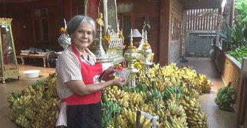ช้างยิ้ม! ถูกหวยสองงวดได้เงินเกือบล้าน เหมากล้วยแจกช้าง 3 ตัน
