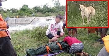 ความรักที่ยิ่งใหญ่! ลุงเห็นหมาตัวโปรดตกน้ำรีบกระโดดลงไปช่วย แต่ตัวเองจมน้ำเสียชีวิต