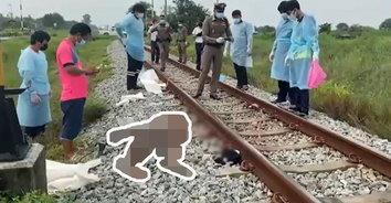 ปริศนาหลอน อยากนอนตาย! นั่งอยู่ดีๆ หนุ่มใหญ่เอาหัวพาดรางรถไฟ หัวเละดับสยอง
