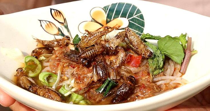 แปลกน่ากิน! ขนมจีนจิ้งหรีดน้ำยาป่า เมนูเด็ดบ้านแสนตอ