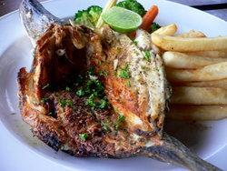 เทศกาลปลากระพงหลากรสที่ปาล์มเทอเรซ