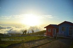 """แหกขี้ตาแต่เช้า เก็บภาพ """"ทะเลหมอก"""" บนภูทับเบิก สถานที่เสมือนเมืองบนสวรรค์"""