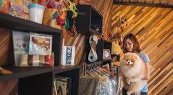 รวม 7 ที่พักในเมืองไทย ที่เปิดไฟเขียวให้เจ้าหมาเจ้าเหมียวเข้าได้!