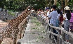 เข้าฟรี! สวนสัตว์ 6 แห่งทั่วเมืองไทย
