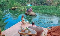 มองช้างคาเฟ่ คาเฟ่ช้างหนึ่งเดียวในเมืองไทย มิติใหม่แห่งวงการคาเฟ่