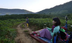 เที่ยวแบบรักษ์โลกกับ 6 ชุมชน Low Carbon