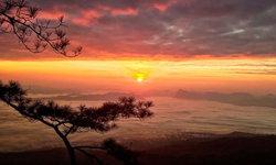 เช้านี้ที่ภูกระดึง พระอาทิตย์ขึ้นท่ามกลางทะเลหมอก สัมผัสอากาศหนาว 13 องศา