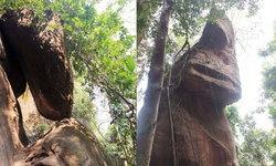 อุทยานแห่งชาติภูลังกา พาเปิดเส้นทางอันซีน ชมเศียรที่เก้าถ้ำนาคี