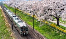 12ไฮไลต์ห้ามพลาดเมื่อไปเซนได เมืองสุดคูลเดสติเนชั่นใหม่มาแรงของญี่ปุ่น