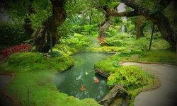 Chom Cafe ร้านอาหารที่ยกเอาป่าดงดิบและน้ำตกมาไว้เป็นมุมถ่ายรูปกลางร้าน!