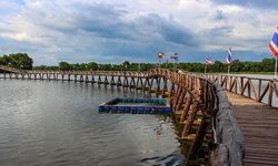 สะพานไม้เคี่ยม มุมถ่ายรูปสุดคูลที่หลายคนยังไม่รู้จักในชุมพร