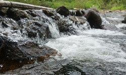 เที่ยวน้ำตกหินลาด ชมฝูงผีเสื้อหลายสีสวยงามท่ามกลางธรรมชาติที่ร่มรื่น
