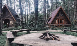 Cabin in the Wood บ้านไม้สุดชิคกลางป่าสน @สวนป่าดอยบ่อหลวง