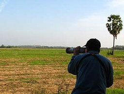เที่ยวเทศกาลดูนก...เมืองเพชรบุรี