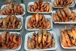 ตลาดกลางเพื่อการเกษตร ซื้อของฝาก ชิมกุ้งแม่น้ำสุดแซบ!!
