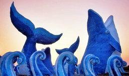 Art of Salt  วาฬบลูด้า