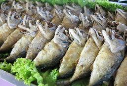 """เทศกาลกินปลาทูและของดีเมืองแม่กลอง ครั้งที่ 17 ตอน """"กินอย่างมีวัฒนธรรม"""""""