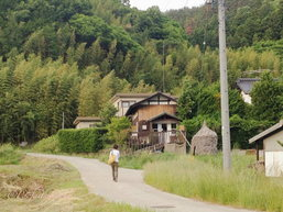 Wwoof in Little Forest: เมื่อฉันได้ไปวูฟในฟาร์มคาเฟ่ ณ บ้านนอกญี่ปุ่น