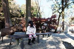 ญี่ปุ่น...เด็กน้อยพาเที่ยวญี่ปุ่นรวมสถานที่ไฮไลท์
