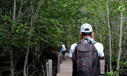 "Unseen ณ ระยอง สะพานรักษ์แสม จุดชมทัศนียภาพ""อเมซอนไทยแลนด์"""