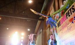 มหกรรมคนรักนก ครั้งที่ 7  รวมตัวคนรักนก ใหญ่ที่สุดในประเทศ!!