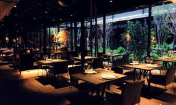 รีวิวร้าน Wang Hinghoi ชมหิ่งห้อยในป่าใจกลางเมืองบรรยากาศสุดโรแมนติก