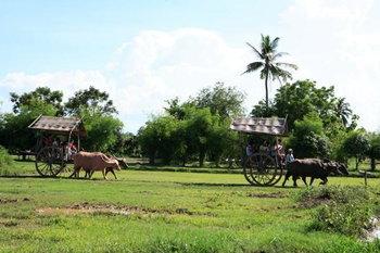 พิพิธภัณฑ์บ้านควายไทย