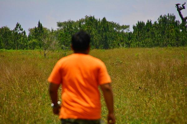 ทุ่งหญ้าที่กว้างใหญ่ ภูกระดึง