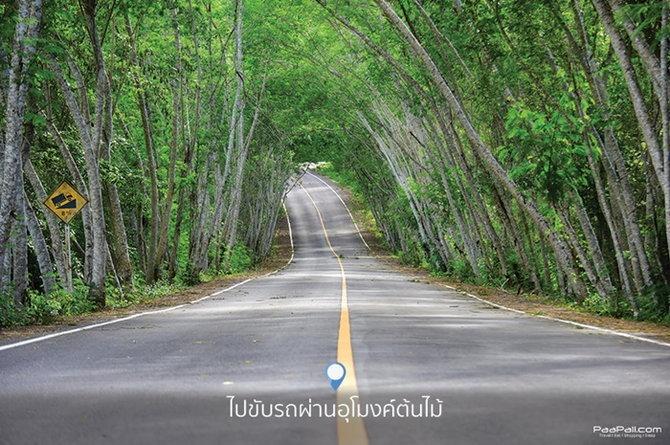 kaeng-krachan-national-park-4
