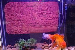 งาน   ประมงน้อมเกล้าฯ ครั้งที่ 15 : มหกรรมพันธุ์ปลาสวยงามและพรรณไม้น้ำของไทย