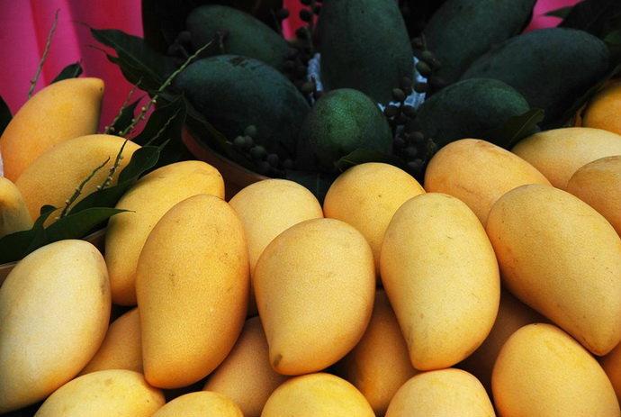 เทศกาล ท่องเที่ยว มะม่วง อาหาร และของดีอำเภอบางคล้า ครั้งที่ 13