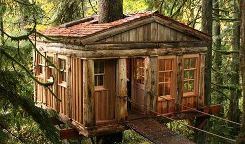 10 โรงแรมบนต้นไม้รอบโลก