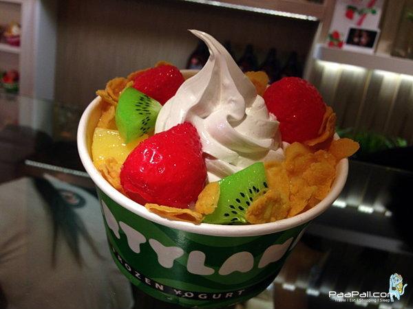 Partyland Frozen Yogurt อาณาจักรของความอร่อย
