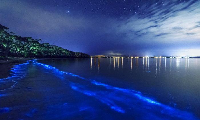 """10 ชายหาดที่ขึ้นชื่อว่า """"แปลกที่สุด"""" จากทั่วทุกมุมโลก"""