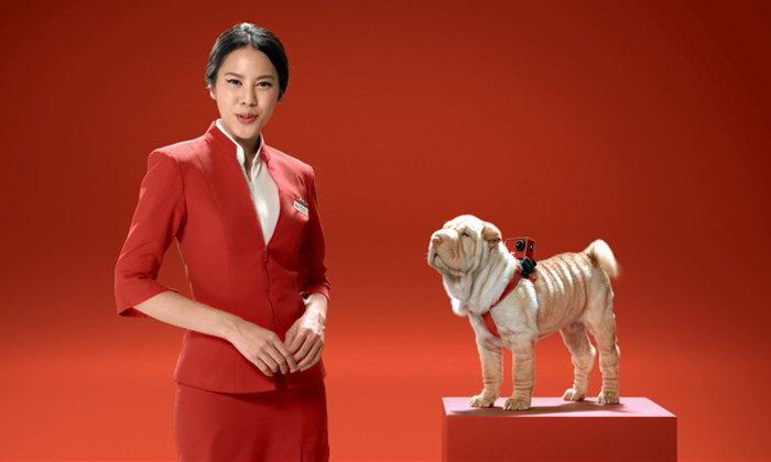 แอร์เอเชียพาเที่ยวจีนกับไกด์เจ้าถิ่น หมาหนุ่มหล่อหญิงหลง พาไปเจาะลึกซีอาน รับรองคุณจะต้อง ว้าวว